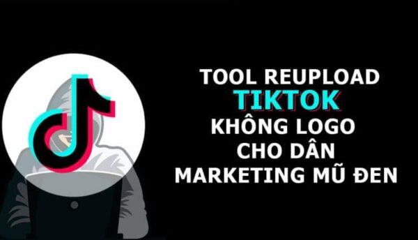 Tool Lấy video Tiktok Việt nam, Trung Quốc, Thế giới không logo